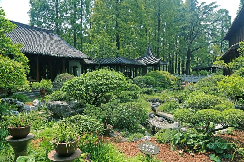 U:\信息报送\科普中心\2021年9月\老师您辛苦啦!教师节凭证免费畅游上海植物园\800\8C9A6871.jpg