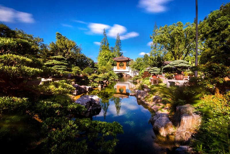 U:\信息报送\科普中心\2021年9月\老师您辛苦啦!教师节凭证免费畅游上海植物园\800\DSC_1716.jpg