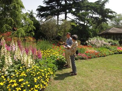 景观花坛层次设计